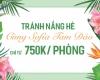 Tránh nắng hè cùng Sofia Tam Đảo chỉ từ 750k/1 phòng